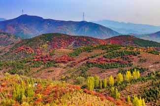 【舞彩淺山1日】周末出發+徒步秋色+五彩淺山+尋覓北京小眾秋色1日游!