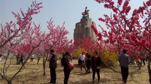 【周末自驾】平谷桃花节、赏万亩桃花、穿越百里桃花长廊(4月14日)