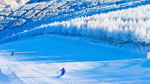 【崇礼滑雪】白桦林温泉谷·长城岭滑雪·亲临2022年冬奥会举办地·休闲2日游!