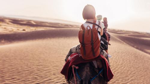 【五一·草原与沙漠】5.1-4日·公主府·库布其沙漠·希拉穆仁草原·大召寺·深度纯玩4日游!