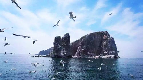 【五一自驾长岛】5.1-4日·自驾最美岛屿-蓬莱长岛·游轮出海·海鲜大餐4日游!