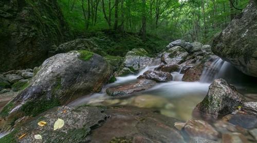 【牛背梁】西安出发 终南山寨 高山瀑布 丛林云海 国家森林公园 秦岭生态 1日游