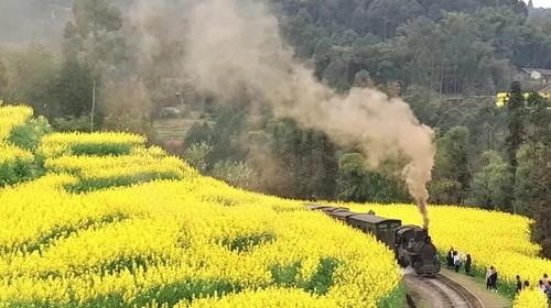 【春日暖阳】赴一场春之盛宴·嘉阳小火车+柳江古镇+丹巴藏寨+金川梨花·轻奢6日游!